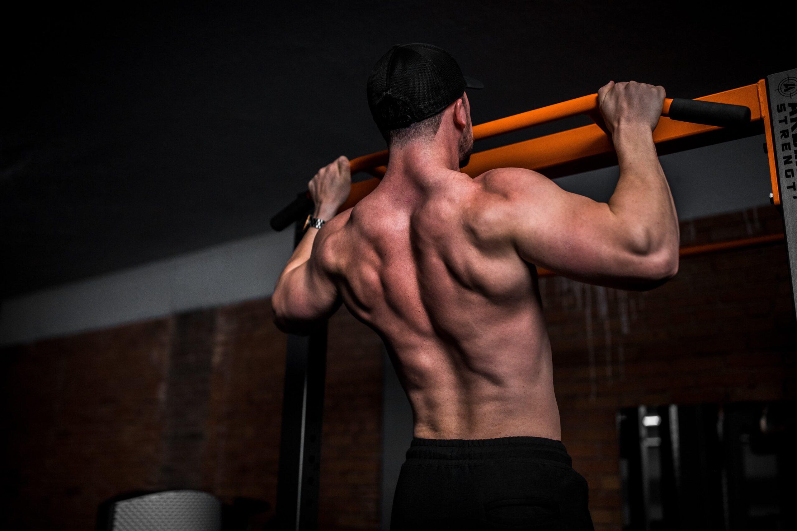 筋肉をつけて身体を大きくする
