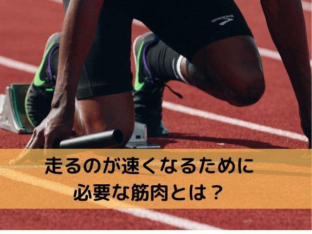 走るのが速くなるために必要な筋肉とは?