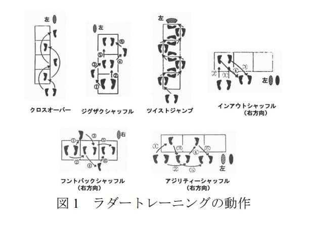 ラダートレーニング図